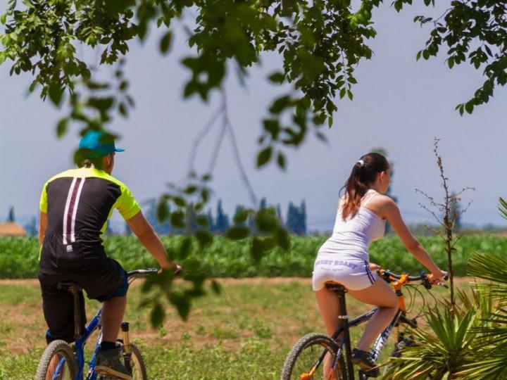 CYCLING TOUR: AIGÜAMOLLS DE L'EMPORDÀ