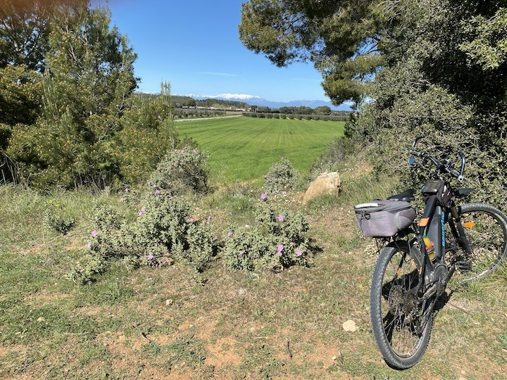 Salida en bicicleta + E-Bikes: Ventalló - Río Fluvià