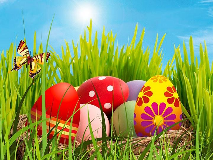 Recerca d'ous de pasqua