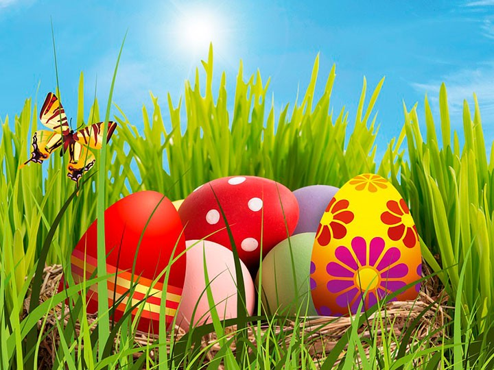 Búsqueda de huevos de pascua