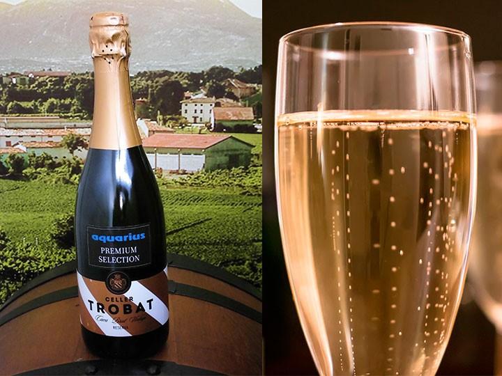 Sparkling wine Premium Aquarius