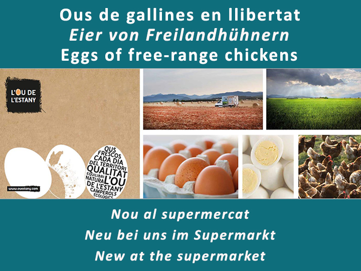 Free-range chickens eggs